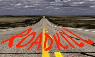 A Road Kill