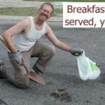 A Roadkill Breakfast