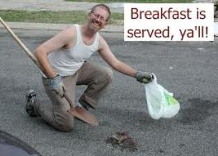 A Roadkill Breakfast