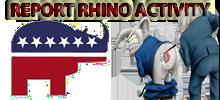 report_rhino