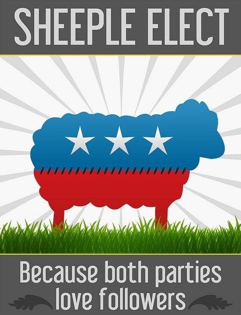 A Sheeple Elect