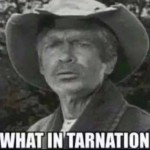 Jed Clampet Tarnation